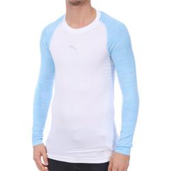 Vêtements Homme T-shirts manches longues Puma 754696-26 Bleu