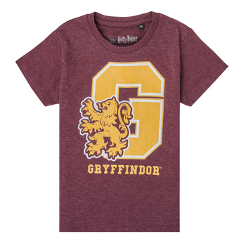 Vêtements Enfant T-shirts manches courtes TEAM HEROES  HARRY POTTER Bordeaux
