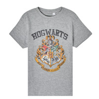 Vêtements Enfant T-shirts manches courtes TEAM HEROES  HARRY POTTER Gris