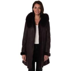 Vêtements Femme Vestes en cuir / synthétiques Cityzen NAPOLI BORDEAUX Bordeaux