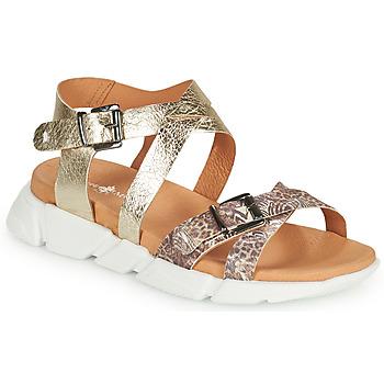 Chaussures Femme Sandales et Nu-pieds Philippe Morvan KAKI V1 Marron