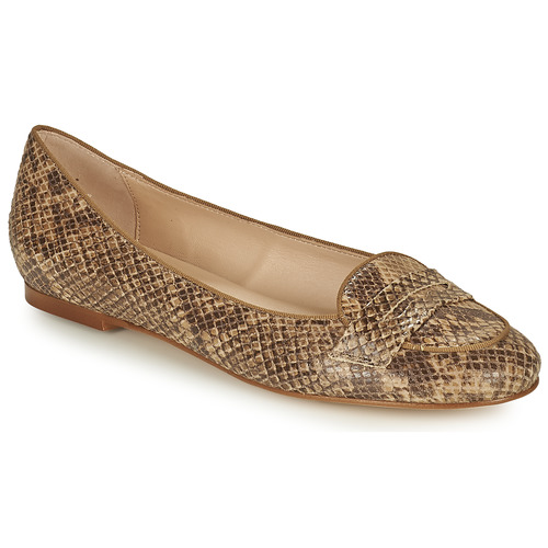 Chaussures Femme Ballerines / babies Betty London OVINOU Taupe