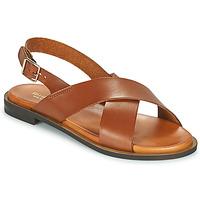 Chaussures Femme Sandales et Nu-pieds Minelli DONA Marron