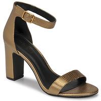Chaussures Femme Sandales et Nu-pieds Minelli CHELYE Bronze