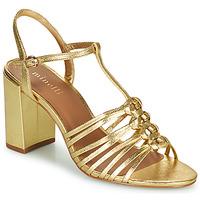 Chaussures Femme Sandales et Nu-pieds Minelli THERENA Doré