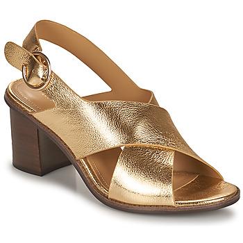 Chaussures Femme Sandales et Nu-pieds Minelli THIVIYA Doré