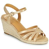 Chaussures Femme Sandales et Nu-pieds Minelli TERENSSE Beige
