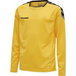 Vêtements Enfant T-shirts manches longues Hummel Maillot  enfant manches longues Authentic HML jaune/noir