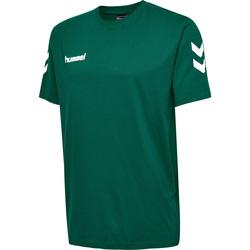 Vêtements Enfant T-shirts manches courtes Hummel T-shirt enfant  hmlgo cotton vert sapin
