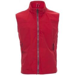 Vêtements Homme Gilets / Cardigans Payper Wear Sweatshirt Payper Horizon R. 2.0 rouge