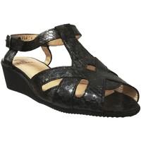 Chaussures Femme Sandales et Nu-pieds Marco TWIST Noir cuir