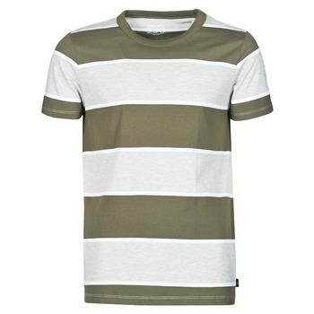 Vêtements Homme T-shirts manches courtes Esprit T-SHIRTS Kaki