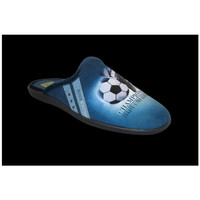 Chaussures Homme Chaussons Anatonic Foot Bleu