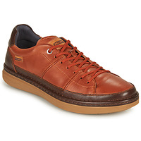 Chaussures Homme Baskets basses Pikolinos BEGUR M7P Marron