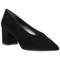 Chaussures Femme Escarpins Sofia Costa 9536 Noir