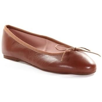 Chaussures Femme Ballerines / babies Champ De Fleurs STEFANIA611 Marron
