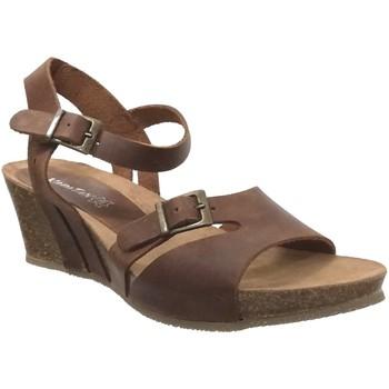 Chaussures Femme Sandales et Nu-pieds Xapatan 5425 Marron cuir