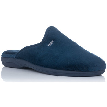 Chaussures Homme Chaussons Zapp  Bleu