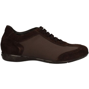 Chaussures Homme Baskets basses Campanile X58 MARRON