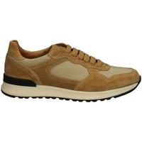 Chaussures Homme Baskets basses Campanile X222 CRÈME