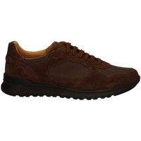 Chaussures Homme Baskets basses Campanile X1 CUIR