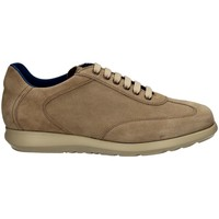Chaussures Homme Baskets basses Campanile X127 DAINO