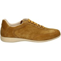 Chaussures Homme Baskets basses Campanile X127 WOT