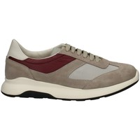 Chaussures Homme Baskets basses Campanile X114 GRIS