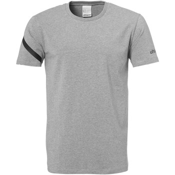 Vêtements Homme T-shirts manches courtes Uhlsport Essential Pro Shirt Grau