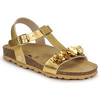 Chaussures Fille Sandales et Nu-pieds Citrouille et Compagnie KAPIBA Doré