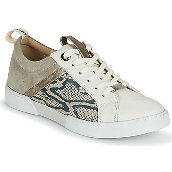 Chaussures Fille Baskets basses JB Martin GELATO Gris / Blanc