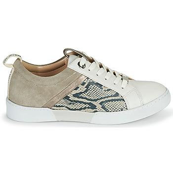 Chaussures Femme Baskets basses JB Martin GELATO Gris / Blanc