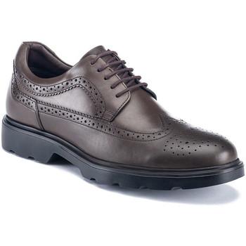 Chaussures Homme Derbies Lumberjack SM67212 002 B01 Marron