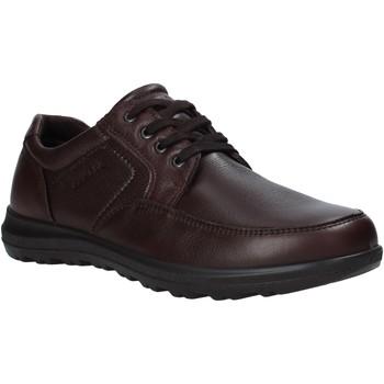 Chaussures Homme Derbies Enval 6216222 Marron