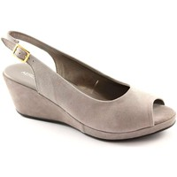 Chaussures Femme Sandales et Nu-pieds Aerosoles AER-WELCOME-OYS Grigio