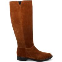 Chaussures Femme Bottes ville Grunland ST0466 Marron