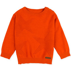 Vêtements Enfant Pulls Losan 027-5653AL Orange
