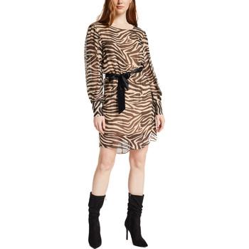 Vêtements Femme Robes courtes Gaudi 021FD15029 Marron