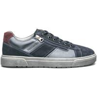 Chaussures Homme Baskets basses NeroGiardini I001750U Bleu