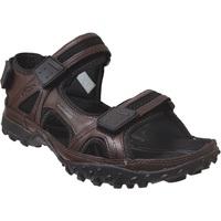 Chaussures Homme Sandales et Nu-pieds Allrounder by Mephisto Regent Marron