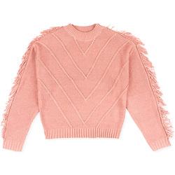 Vêtements Enfant Pulls Losan 024-5002AL Rose