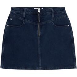 Vêtements Femme Jupes Calvin Klein Jeans J20J214581 Bleu
