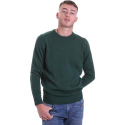 Vêtements Homme Pulls Navigare NV12002 30 Vert