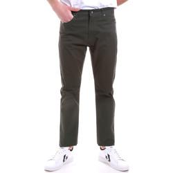 Vêtements Homme Chinos / Carrots Navigare NV53090 Vert