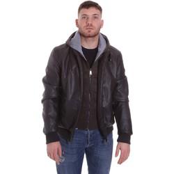 Vêtements Homme Blousons Roberto Cavalli FST407 Marron