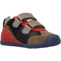 Chaussures Garçon Baskets basses Biomecanics 201130 Multicolore