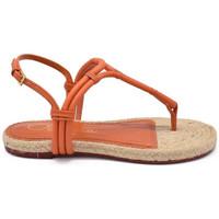Chaussures Femme Sandales et Nu-pieds Charlotte Olympia Sandales Orange