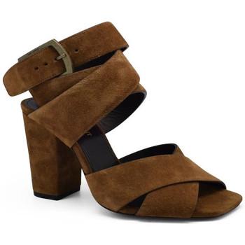 Chaussures Femme Sandales et Nu-pieds Saint Laurent  Camel