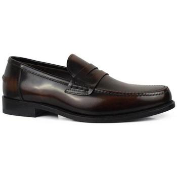 Chaussures Homme Mocassins Alberto  Marron