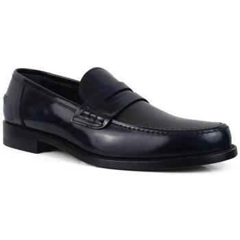 Chaussures Homme Mocassins Alberto  Bleu